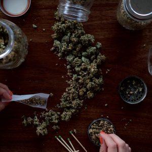 Pourquoi ne pas fumer la fleur de CBD ?